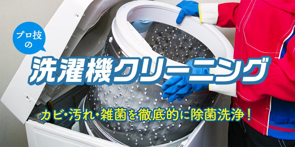プロ技の洗濯機クリーニング